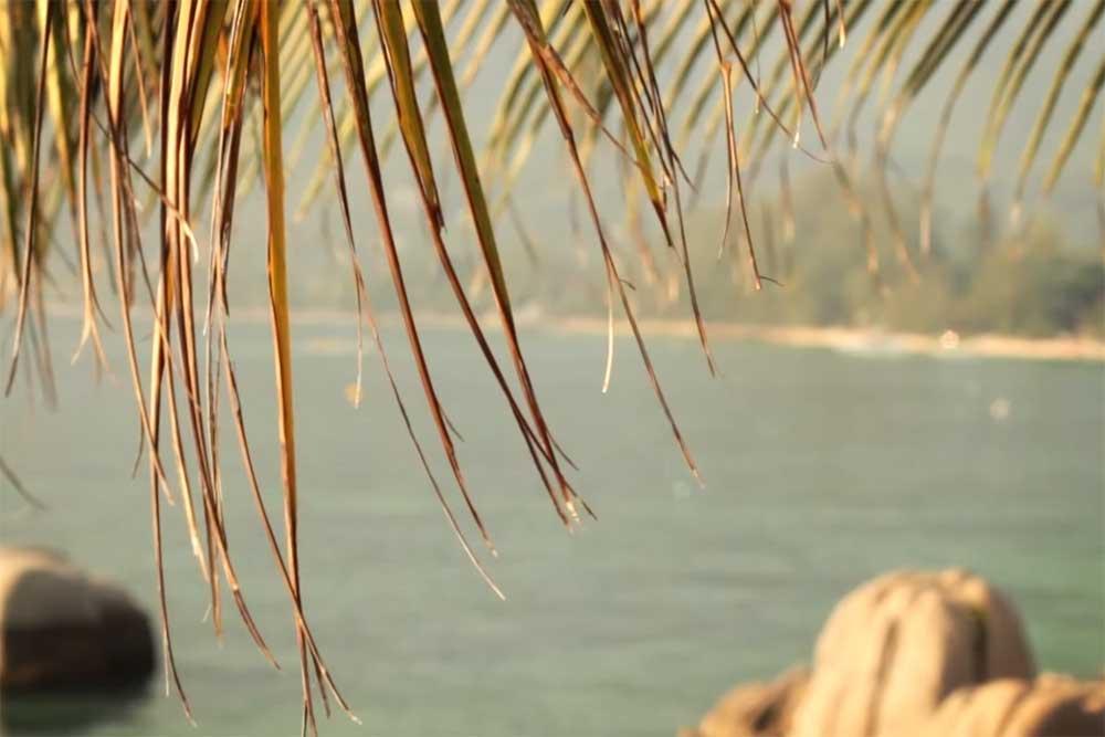 Simple life talay divers resort sairee beach koh tao sairee beach on koh tao altavistaventures Choice Image